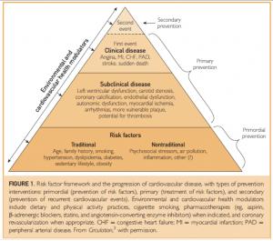 prevenzione patologie cardiovascolari