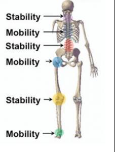 mobilità e stabilità