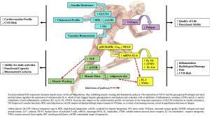 effetti dell'allenamento su artrite reumatoide
