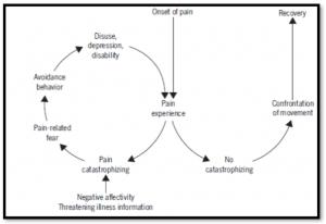 fear avoidance model