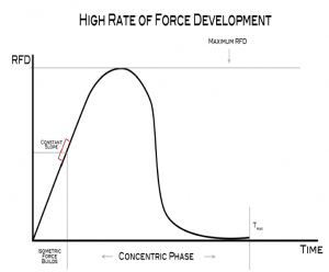 high rate of force development