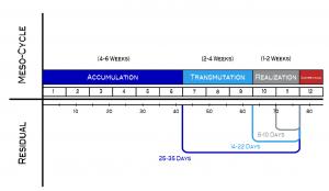 programmazione dell'allenamento trifasico