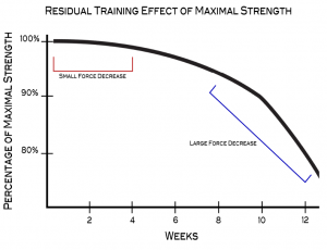 residual training effect of maximal strength