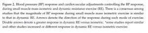 small muscle mass resistance excercise (handgrip-arm muscles)_2
